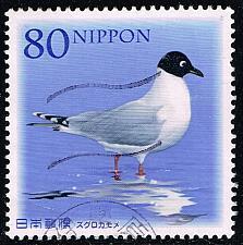 Buy Japan #3352 Saunder's Gull; Used (4Stars) |JPN3352-01XDT
