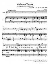 Buy Schubert - Gefrorne Tranen from Winterreise for Medium Voice in D Minor