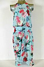 Buy CHELSEA28 womens Sz 10 sleeveless blue FLORAL PRINT fully lined dress NWT (B5)P