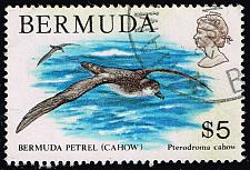 Buy Bermuda #379 Petrel; Used (5Stars) |BER0379-01XRP