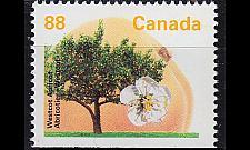 Buy KANADA CANADA [1994] MiNr 1407 Hu ( **/mnh ) Pflanzen