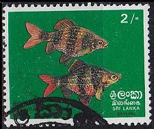 Buy CEYLON SRI LANKA [1972] MiNr 0431 ( O/used ) Fische
