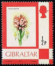 Buy Gibraltar #340 Toothed Orchid; Unused (0.50) (2Stars) |GIB0340-01