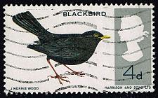 Buy Great Britain #464 European Blackbird; Used (0.25) (3Stars)  GBR0464-01XVA