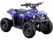 Buy Battery Powered Four Wheeler 36V 500W Ride On Electric Quad ATV Parent Control