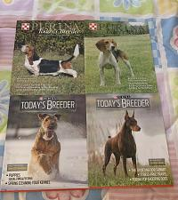 Buy Four Issues 85 86 87 88 Todays Breeder Magazine 2013 Cocker National Field Trial