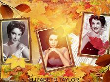 Buy ELIZABETH TAYLOR 3 FT X 5 FT FABRIC BANNER