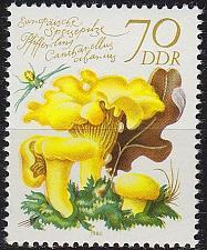 Buy GERMANY DDR [1980] MiNr 2556 ( **/mnh ) Pflanzen