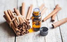 Buy Cannelle Essential Oil