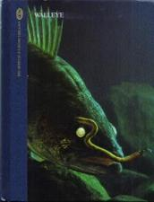 Buy WALLEYE :: HB by Dick Sternberg :: FREE Shipping