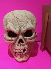 """Buy 12+ inches tall and 11"""" wide CeramicSkeleton Skull on a 5"""" base, weighs over 6 lbs."""
