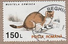 Buy [RO3843] Romania Sc. no. 3843 (1993) CTO