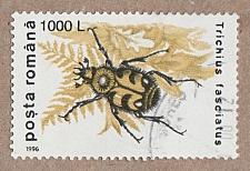 Buy [RO4089] Romania Sc. no. 4089 (1996) Used