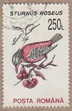 Buy [RO3821] Romania Sc. no. 3821 (1993) Used