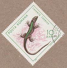 Buy [RO1720] Romania Sc. no. 1720 (1975) CTO