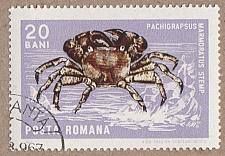 Buy [RO1881] Romania Sc. no. 1881 (1975) CTO