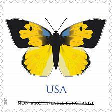 Buy 2019 70c California Dogface Butterfly Scott 5346 Mint F/VF NH