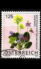 Buy ÖSTERREICH AUSTRIA [2007] MiNr 2633 ( O/used ) Blumen