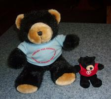 Buy 2003 AVA American Volkssport Association Convention Stuffed Bears For Charity