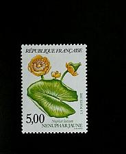Buy 1992 France Flowers, Nuphar Luteum Scott 2301 Mint F/VF NH