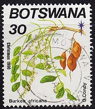 Buy BOTSWANA [1990] MiNr 0484 ( O/used ) Pflanzen