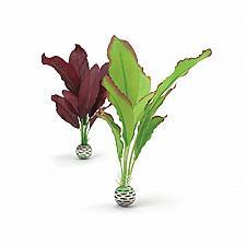 Buy biOrb Silk Plant Set Medium Green & Purple
