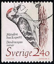 Buy Sweden #1725 Lesser Spotted Woodpecker; Used (4Stars) |SVE1725-05