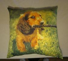 "Buy Cocker Spaniel Dog with stick Puppy Pillow 16"" X 16"""