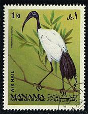 Buy Manama Michel #162 African Sacred Ibis; CTO (5Stars) |MAN0162-01XRS