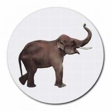 Buy Elephant Pachyderm Trunk Round Computer Mouse Pad