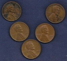 Buy US Wheat Set of Five (5) 1955D Pennies