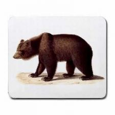 Buy Grizzly Bear Art Computer Mouse Pad