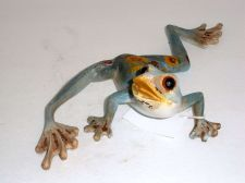 Buy Frog blue