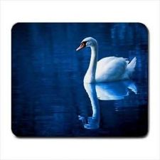 Buy White Swan Lake Reflection Photo Computer Mouse Pad