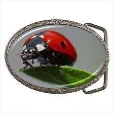 Buy Ladybug Lady Bug Unisex Belt Buckle