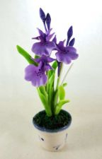 Buy DOLLHOUSE MINIATURE PURPLE ORCHID FLOWERS CLAY CERAMIC POT HOME DECOR GARDEN