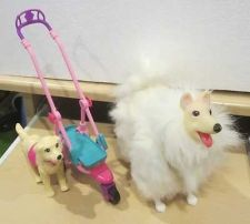 Buy Lot Of 2 Barbie Pet Dogs With Pet Stroller