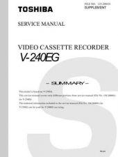 Buy V241UK Technical Information by download #116308
