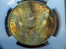 "Buy 1884-O, MS-63 ""NGC *STAR* TONER"" RAINBOW SHITFING TONE +++ REVERSE-OUT SLAB"