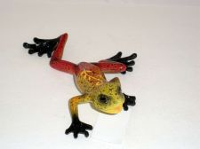 Buy Small red frogs (2)