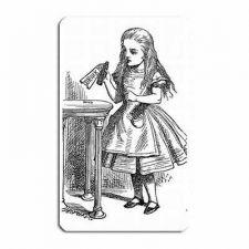 Buy Alice In Wonderland Drink Me Art Vinyl Fridge Magnet