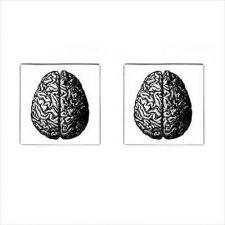 Buy Human Brain Vintage Anatomy Art Square Cufflinks