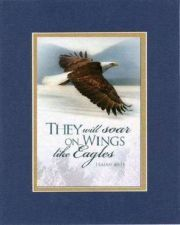 Buy Inspirational Plaque - They Will Soar On Wings Like Eagles Isaiah 40:31 8x10