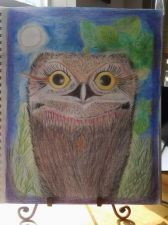 Buy Original Nature Art direct from Artist /Owlet Watercolor pencil Drawing