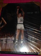 Buy LARRY BIRD AUTHENTIC SIGNED PHOTOGRAPH