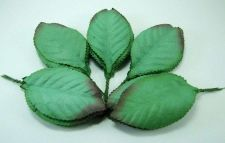 Buy 50 MULBERRY PAPER GREEN LEAVES WIRE STEM CRAFT CARD EMBELLISHMENT WEDDING PARTY