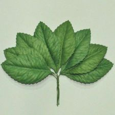 "Buy 50 MULBERRY PAPER ARTIFICIAL BIG ROSE LEAVES GREEN FOLIAGE 4cmX7cm / 1.5""X 2.75"""