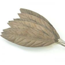 "Buy 50 PCS MULBERRY PAPER ARTIFICIAL LARGE BROWN LEAVES 3 cm X 10 cm / 1.2""X 4"""