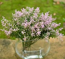 Buy 12 PCS ARTIFICIAL MINI FRUIT PINK LILAC GREEN FLOWER PLANT PICK WEDDING DECOR