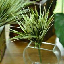 Buy 12 PCS ARTIFICIAL GREEN VANILLA GRASS FOLIAGE PLANT BUSH BULK HOME DECORATION